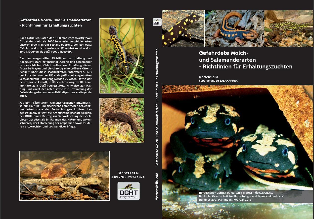 Van Hak Deuren : Salamanderseiten
